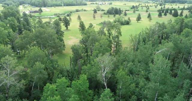 Lot 3 Eagle Drive, Bigfork Twp, MN 56628 (#5622036) :: Bos Realty Group