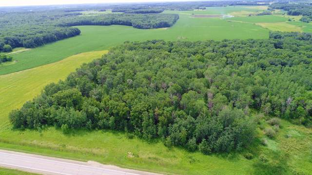 40754 County 21, Browerville, MN 56438 (MLS #5622158) :: The Hergenrother Realty Group