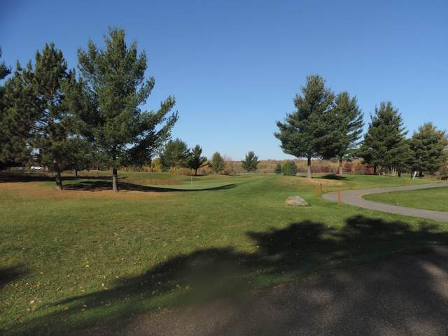 TBD 2 Eagle Drive Nw, Walker, MN 56484 (#5623281) :: Straka Real Estate