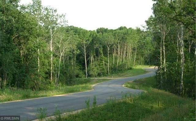 1368 Birch Park Road, Hudson, WI 54082 (#5624253) :: Holz Group