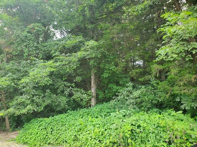 950 Cedar Point Lane SE, Oronoco, MN 55960 (#5625369) :: Twin Cities Elite Real Estate Group | TheMLSonline