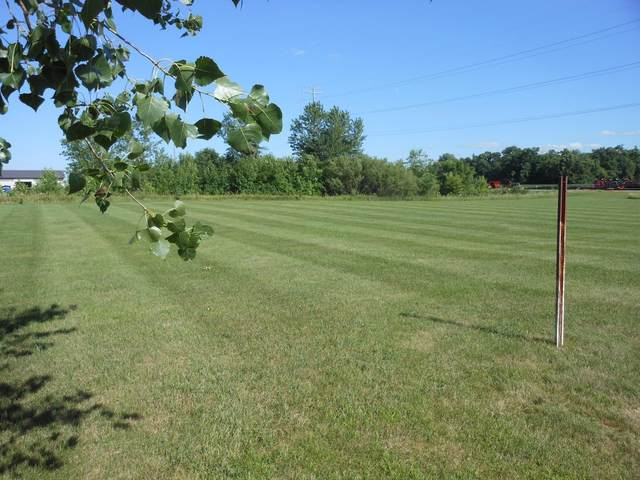 Abbott Dr. SE Abbott Drive, Willmar, MN 56201 (#5628222) :: Twin Cities Elite Real Estate Group | TheMLSonline