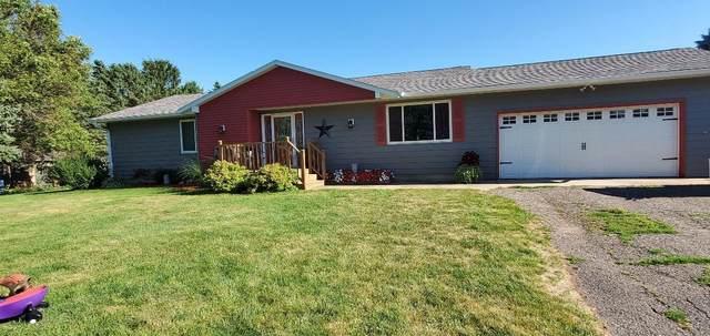 601 3rd Street NW, Hayfield, MN 55940 (#5630856) :: The Pietig Properties Group