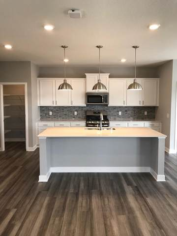 11649 Shady View Lane, Rogers, MN 55311 (#5634206) :: The Pietig Properties Group
