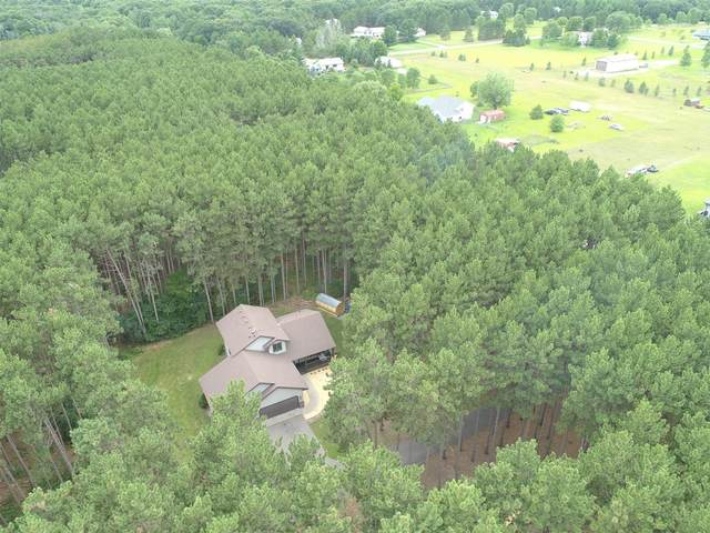 16887 229th Avenue NW, Big Lake, MN 55309 (#5635507) :: Servion Realty
