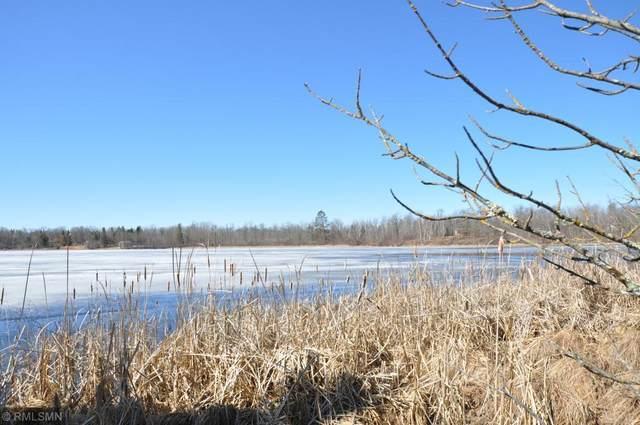 TBD Swift Lake Drive NE, Remer, MN 56672 (#5638449) :: The Pietig Properties Group