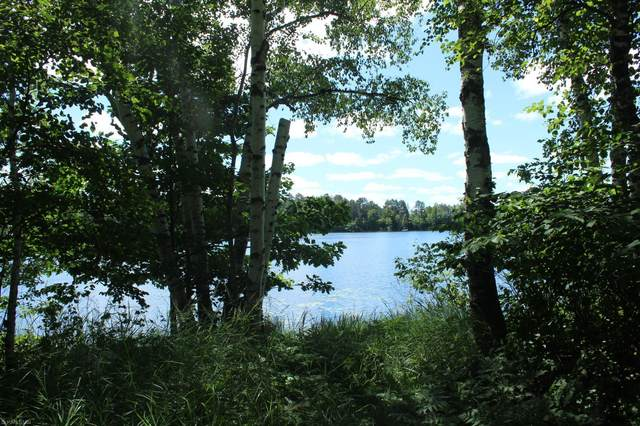 XXX Lot 8 Eden Lane Se, Blackhoof Twp, MN 55707 (#5638601) :: The Preferred Home Team