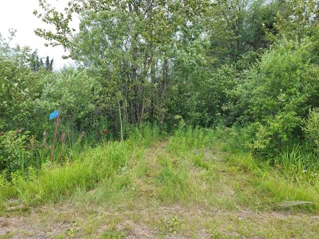 12914 County Road 22, Cook, MN 55723 (#5638766) :: Servion Realty