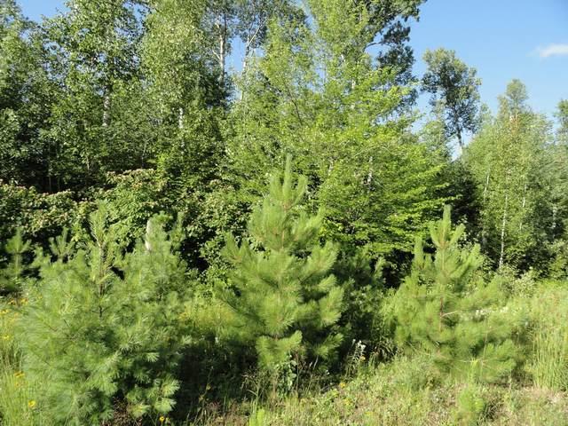 6057 Voyageurs Trail, Biwabik, MN 55708 (#5639464) :: Twin Cities South