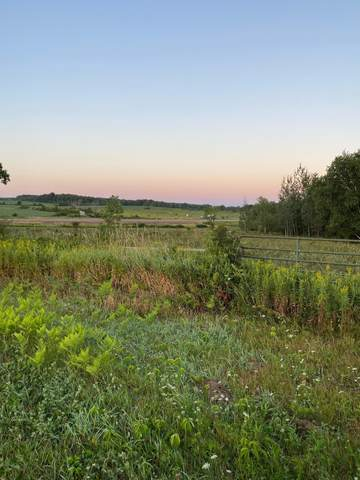 0 290th Street, Cady Twp, WI 54027 (#5642021) :: Lakes Country Realty LLC