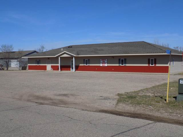 1015 State Highway 29 N, Alexandria, MN 56308 (#5642820) :: Twin Cities South