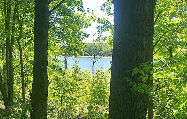 42451 310th Place, Aitkin, MN 56431 (#5643133) :: The Preferred Home Team