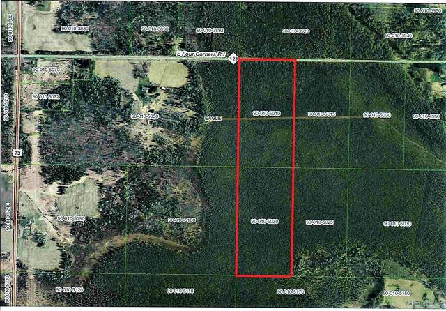 TBD Four Corners Rd, Eagle Twp, MN 55726 (#5643546) :: Holz Group