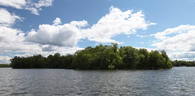 Private Island Lake Vermilion, Tower, MN 55790 (#5646470) :: Straka Real Estate