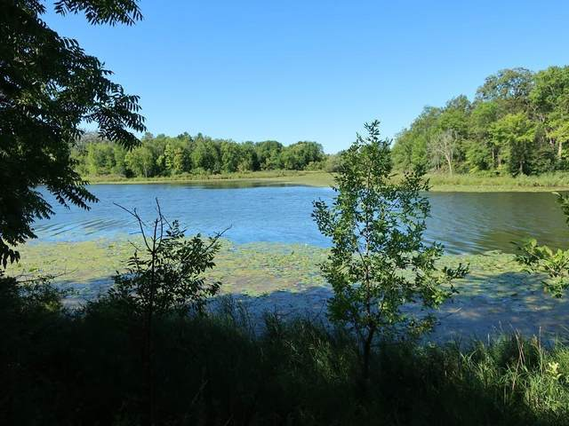 Lot 5 Sunset Landing Drive, Frederic, WI 54837 (#5647485) :: Servion Realty