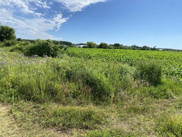 534 County Road Bb, Eau Galle Twp, WI 54028 (MLS #5647981) :: The Hergenrother Realty Group
