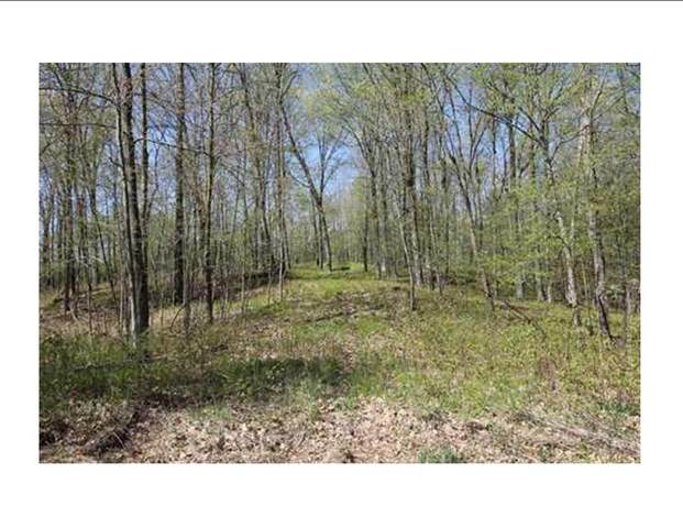 Lot 2 County Rd B, Cumberland, WI 54829 (#5648164) :: Lakes Country Realty LLC