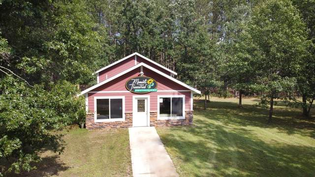34648 Hay Creek Trail, Jenkins, MN 56474 (#5649465) :: The Odd Couple Team