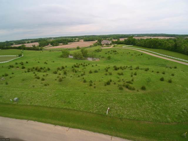 7365 Equestrian Way, Minnetrista, MN 55331 (#5649489) :: Holz Group