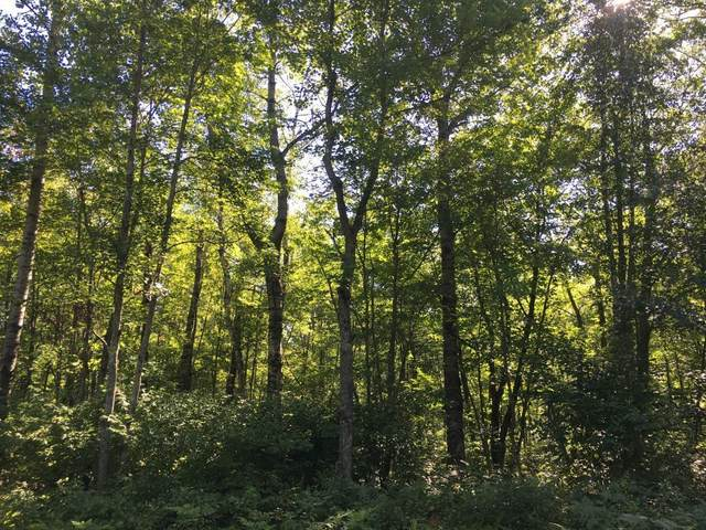 Lot 22 E Ruth Lake Road, Iron River, WI 54847 (#5653282) :: The Michael Kaslow Team