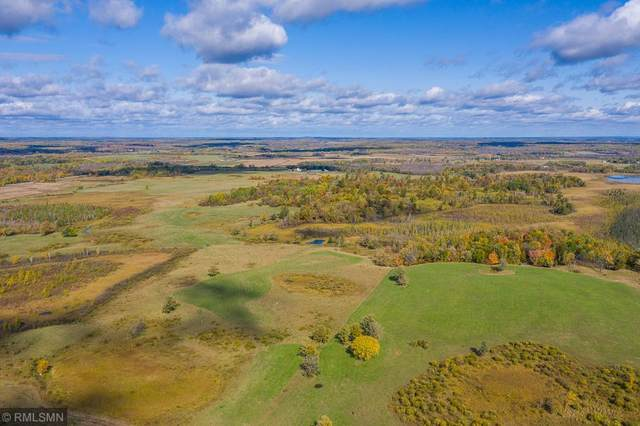 XXXX County Road 1 SW, Pequot Lakes, MN 56472 (#5657023) :: The Pietig Properties Group