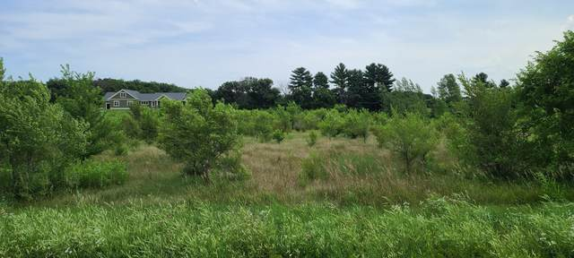 Lot 67 Wildrose Road, Trempealeau Twp, WI 54661 (#5659680) :: The Preferred Home Team