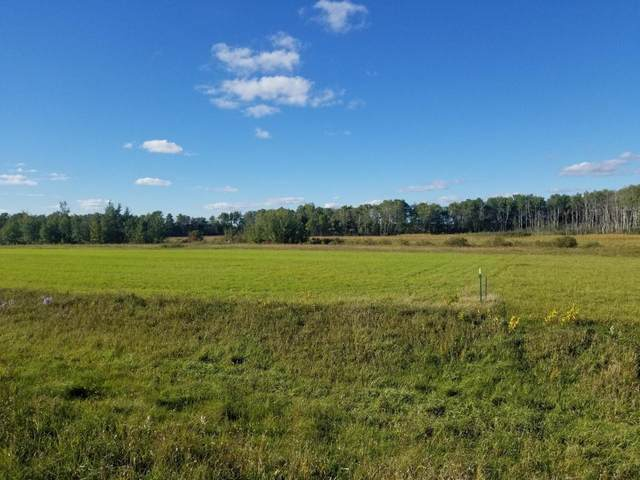 270XX 213th Street, Pierz, MN 56364 (#5659862) :: Lakes Country Realty LLC