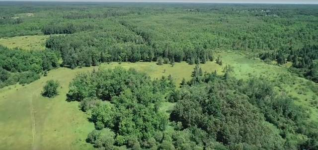 3300 County Road 236, Effie, MN 56639 (#5659957) :: Lakes Country Realty LLC