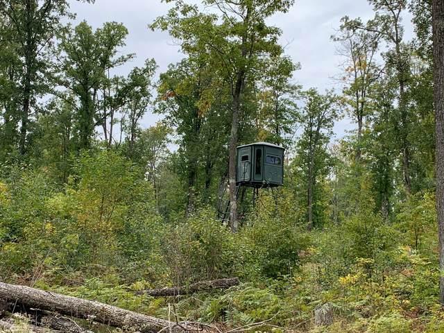 TBD Cuyuna Trail, Aitkin, MN 56431 (#5660557) :: HergGroup Northwest