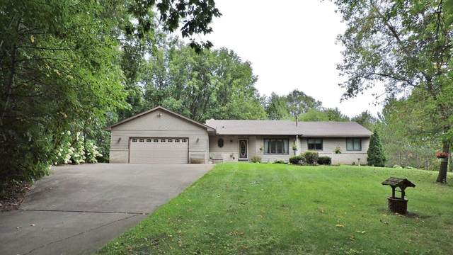 16710 204th Circle NW, Big Lake, MN 55309 (MLS #5660747) :: The Hergenrother Realty Group