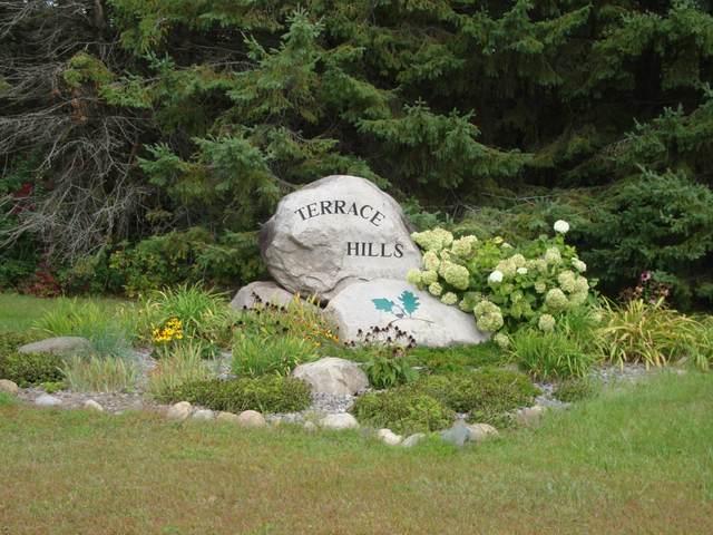 5390 Garden Hills Drive, Saint Augusta, MN 56301 (MLS #5660848) :: RE/MAX Signature Properties