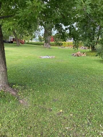 xxx Lewis Lane, Elysian, MN 56028 (#5661799) :: Holz Group