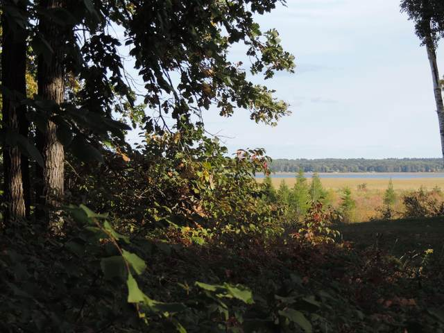 TBD Lot 13 Grouse Loop Nw, Walker, MN 56484 (#5662016) :: Bos Realty Group