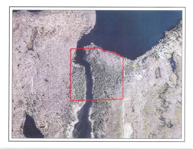 Lot 123 Leonard Drive, Birchwood, WI 54817 (#5662942) :: Lakes Country Realty LLC