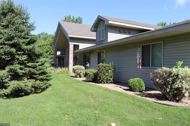 22851 Mn Highway 15, Dassel, MN 55325 (#5667789) :: The Pietig Properties Group