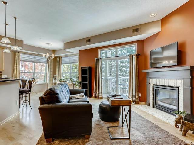 1244 County Road D E #214, Maplewood, MN 55109 (#5668022) :: Tony Farah | Coldwell Banker Realty