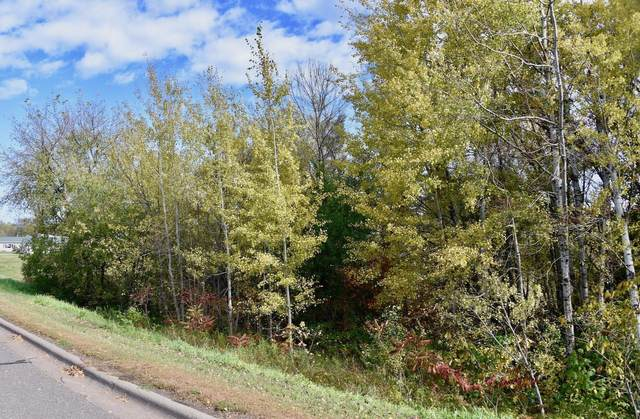 2XX(1) Evergreen Lane, Onamia, MN 56359 (#5668189) :: Bos Realty Group