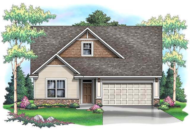 2755 Jacamar Avenue NE, Saint Michael, MN 55376 (#5669543) :: The Michael Kaslow Team