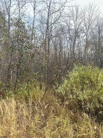 xxxx Ugstad Rd, Hermantown, MN 55811 (#5669796) :: Holz Group