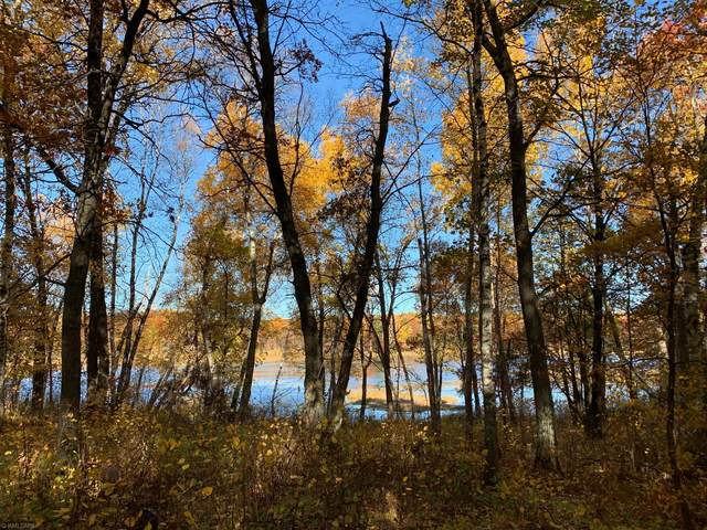 Lot 7 Spruce Road, Irondale Twp, MN 56455 (#5670529) :: The Pietig Properties Group