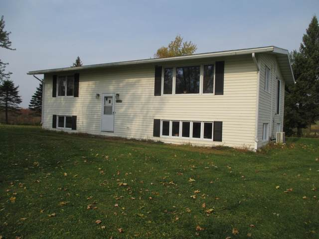 2816 90th Avenue, Woodville, WI 54028 (#5672631) :: Tony Farah | Coldwell Banker Realty
