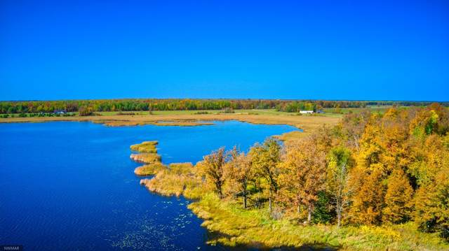 TBD - 14 AC County Road 3, Fern Twp, MN 56678 (#5672955) :: Lakes Country Realty LLC