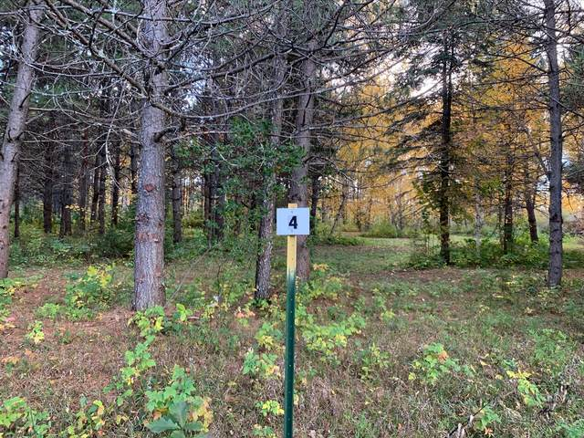 LOT4 BLK2 Owl Avenue, Aitkin, MN 56431 (#5673049) :: The Preferred Home Team