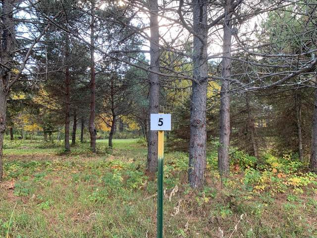 LOT5 BLK2 Owl Avenue, Aitkin, MN 56431 (#5673050) :: The Preferred Home Team