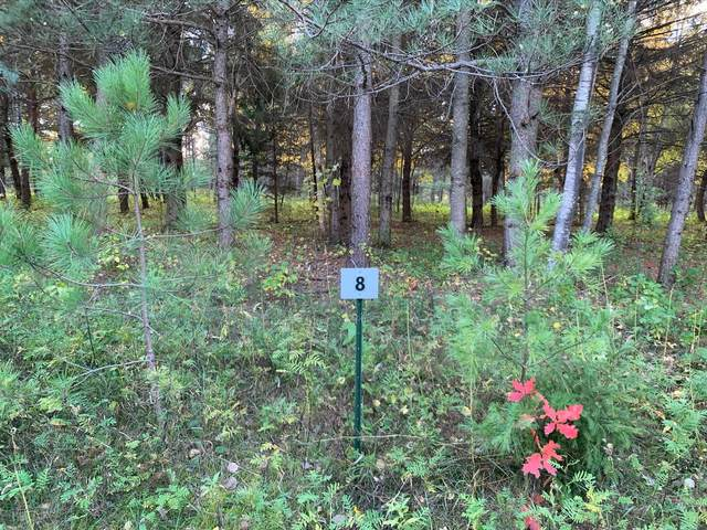 LOT8 BLK2 Owl Avenue, Aitkin, MN 56431 (#5673054) :: The Preferred Home Team