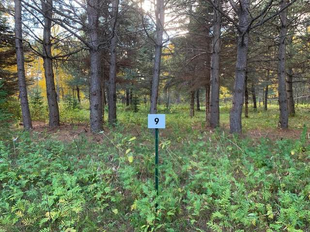 LOT9 BLK2 Owl Avenue, Aitkin, MN 56431 (#5673055) :: The Preferred Home Team