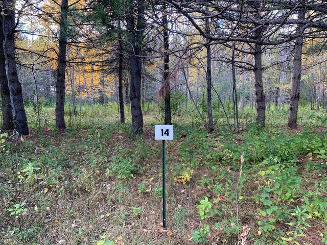 LOT14 BLK2 Owl Avenue, Aitkin, MN 56431 (#5673058) :: The Preferred Home Team