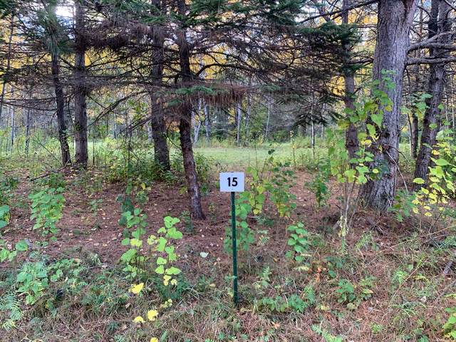 LOT15 BLK2 Owl Avenue, Aitkin, MN 56431 (#5673060) :: The Preferred Home Team