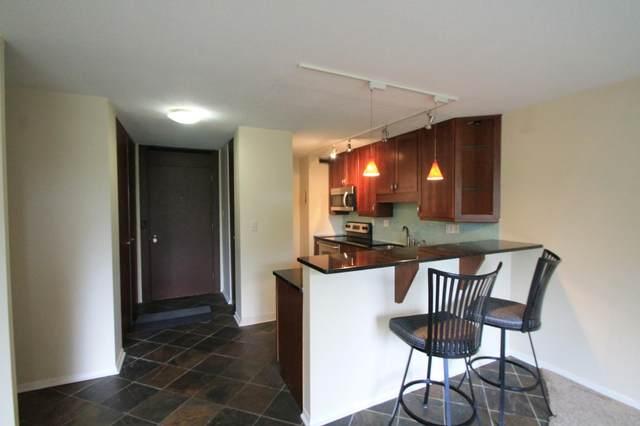 15 S 1st Street A212, Minneapolis, MN 55401 (MLS #5673110) :: RE/MAX Signature Properties