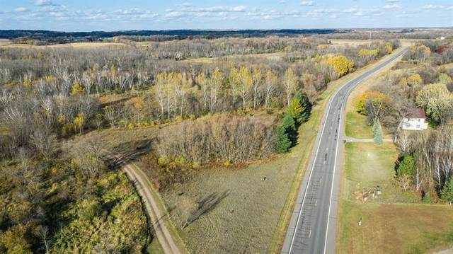 6456 County Road 44, South Haven, MN 55382 (#5673341) :: Holz Group